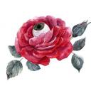 تصویر rose garden