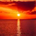 تصویر Sunest Fly