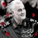 تصویر سرباز وطن
