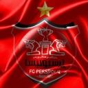 تصویر کاکتوس سرخ