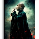 تصویر Lord Voldemort