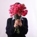 تصویر گل فروشی آنلاین گُل سِتان