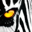 تصویر en blanco y negro