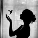 تصویر *سیاوش سیاه*