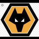 تصویر kiarash Wolverhampton