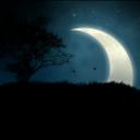 تصویر Dark Night
