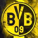 تصویر BVB 09