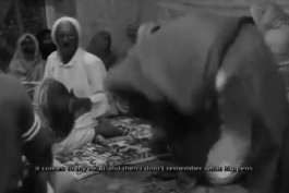 شیخ شنگر