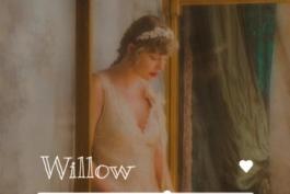 آهنگ Willow از Taylor Swift
