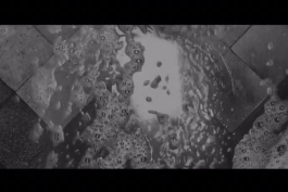 اهمیت آب در سینمای آلفونسو کوارون
