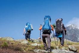 کوهنورد / دماوند / ویروس کرونا