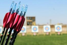 فدراسیون جهانی تیراندازی-world archery federation
