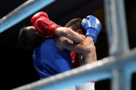 فدراسیون بوکس-ایران-iran boxing federation