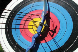 فدراسیون تیر اندازی با کمان ایران-iran archery federation