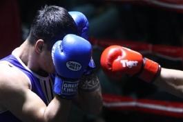 لیگ برتر بوکس-ایران-iran boxing league